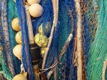 Contributi settore pesca